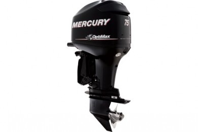 Mercury Seapro 75HP